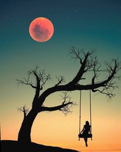 Ideas silhouette art painting the moon Silhouette Painting, Silhouette Photo, Moon Photography, Photography Lighting, Portrait Photography, Gopro Photography, Landscape Photography, Wedding Photography, Beautiful Nature Wallpaper