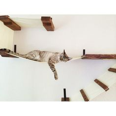 Your cat will love playing on this Deluxe Handcrafted Cat Perch. It's a play area in which your cat can run up the ladder, through the sisal-lined hole, and up to the top level. When your cat gets tired, he can also nap on one of the stiff fabric hamm Cat Wall Shelves, Floating Cat Shelves, Cat Hammock, Cat Playground, Cat Room, Pet Furniture, Cheap Furniture, Space Cat, Cat Tree
