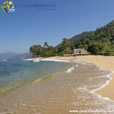 ️ Bellas Playas zona sur, + sobre Quimixto http://www.puertovallarta.net/what_to_do/quimixto-jalisco?utm_content=buffer459b6&utm_medium=social&utm_source=pinterest.com&utm_campaign=buffer Great beaches of the South , + info: #Quimixto http://www.puertovallarta.net/what_to_do/quimixto-jalisco.php?utm_content=buffer459b6&utm_medium=social&utm_source=pinterest.com&utm_campaign=buffer