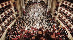 80 Jahre Wiener Opernball: Auch heute ist die Wiener Staatsoper noch der prächtigste Ballsaal der Welt. Mehr zur Geschichte des Opernballs: http://www.nachrichten.at/nachrichten/150jahre/tagespost/Der-erste-Walzer-in-der-Oper;art171761,1639171 (Bild: APA)