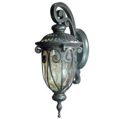 Viviana Collection 1-Light Oil Rubbed Bronze Outdoor Wall-Mount Lamp