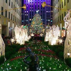 Scenes from last night  Have you gone to see the free at Rockefeller Center yet? #tistheseason #happyholidays #christmas #rockefellercenter #nyc #christmasinnyc #newyork #newyorkcity by ingoodcompanyhg #instashare #sharingiscaring #love #theirsuccessisoursuccess