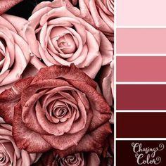 color inspiration chart or palette pink rose red Color Schemes Colour Palettes, Colour Pallette, Color Combos, Vintage Colour Palette, Pink Palette, Fleur Design, Pink Photography, Color Balance, Colour Board