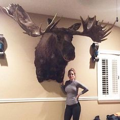 Here could be a Visual aid to explain how big a moose is to people Moose Hunting, Big Game Hunting, Hunting Stuff, Moose Pictures, Hunting Pictures, Large Animals, Cute Animals, Crane, Deer Mounts