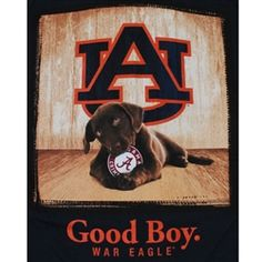 Auburn Tigers Football T-Shirts War Eagle - Unique College T-Shirts Football War, Football Crafts, College Football Teams, Best Football Team, Auburn Football Quotes, Auburn Tigers, Auburn T Shirts, Auburn Game, Bird Barn