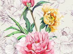 View Watercolour Peonies Floral Design by Petroula Tsipitori. Available in Seamless Repeat Royalty-Free. Layered