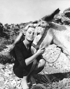 """Animal lover Brigitte Bardot adopted this donkey and some dogs while on location for one of her movies. The donkey was quite sick and BB kept the animal…"" Jane Birkin, Brigitte Bardot Style, Classic Hollywood, Old Hollywood, Divas, Bridgitte Bardot, Look Dark, And God Created Woman, Deneuve"