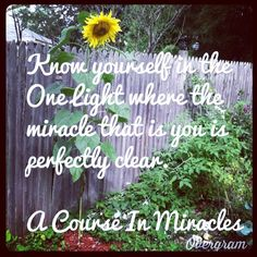 A Course in Miracles to brighten your day.the One Light Peace Of God, Inner Peace, Miracle Quotes, A Course In Miracles, Brighten Your Day, One Light, Knowing You, Spirit, Wisdom