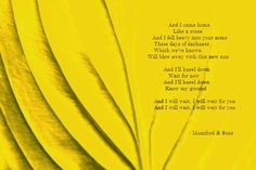 """#Mumford&Sons """"I Will Wait"""" Great song, love it ♥"""