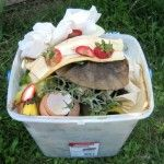 How To Compost Without Raising a Stink | Squawkfox