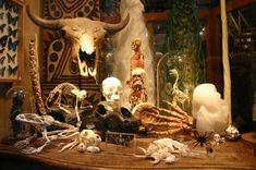 evolution store in soho