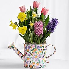 """Pro Flowers ~ NEW Spring Watering Can Bulb Garden $34.99 ~   •Bulbs arrive potted just peeking above the soil, and bloom in 2-3 weeks •When fully bloomed gift stands approximately 16-18"""" tall •Includes our exclusively designed, colorful tin watering can •Individual varieties may grow and bloom at different rates •Care instructions included •Item #30204140  Shop @ www.proflowers.com"""