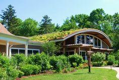 Trabalho sobre Telhado - telhado verde