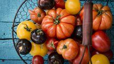 Klein, groß, gelb, schwarz, pflaumenförmig, gefurcht oder oval – alte Tomatensorten überzeugen durch ihre Vielfalt. (Quelle: imago/Westend61)