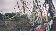 """https://flic.kr/p/25Dt7Bh 