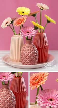 All those really nice and sweet colors are like true eye candy. #pink #flowers #gerbera #candycrush #DIY #inspiration