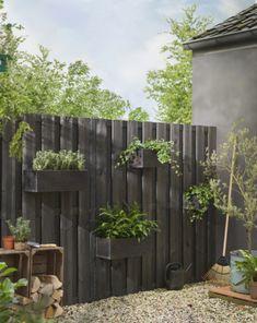Garden Shelves, Fence Planters, Garden Deco, Backyard Fences, Hedges, Garden Design, Pergola, Outdoor Structures, Patio