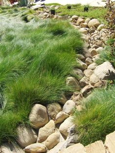 Dry River Bed | Hill Landscaping | Pinterest