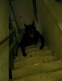 I hate basements!!  I think this f'er sleeps under my bed too!!!