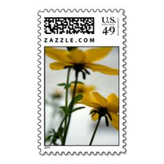Yellow Flowers - Solaire Postage - Floral Photography by PB