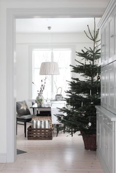 I love the idea of the tree inside a basket rather than one of those metal holder things.