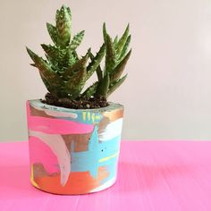 Are you interested in our concrete copper plant pot? With our concrete colour planter you need look no further. Concrete Color, Concrete Pots, Painting Concrete, Planting Succulents, Potted Plants, Indoor Plants, Blue Plants, Painted Flower Pots, On The High Street