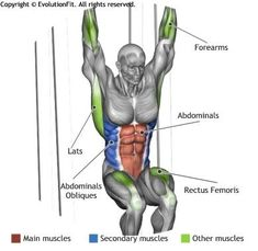 ABDOMINALS - HANGING LEG RAISE