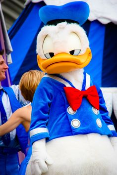 It looks like Donald is feeling a little blue!
