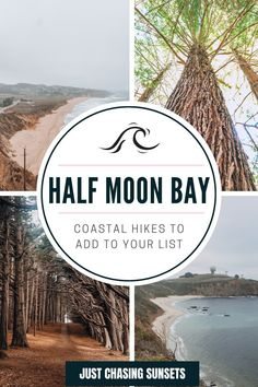 Planning to travel to the Bay Area? Don't skip Half Moon Bay, Caliornia. One of the best things to do in Half Moon Bay is go hiking. Read this post for the best hikes in Half Moon Bay for stunning views! Cypress Tree Tunnel, Cypress Trees, California Travel Guide, California Destinations, Beautiful Places To Visit, Cool Places To Visit, Half Moon Bay California, Travel For A Year, Moss Beach
