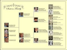 Improving a free genealogy Template