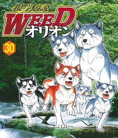Densetsu Weed Adachi Mitsuru, Anime Films, Cartoon, My Favorite Things, Wallpaper, Dogs, Silver, Sleeves, Engineer Cartoon