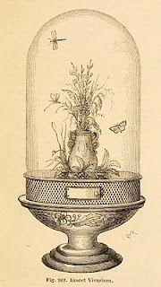 """""""insect vivarium,"""" 1866"""