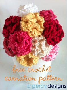 Crochet patron clavel!! en ingles http://www.cpercydesigns.blogspot.com.au/2013/01/flower-of-month-carination.html