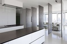 Large, metal clad, pivoting doors making an adjustable boundary between living space and kitchen. The Tel Alvis Flat - Totchilds by Pitsou Kedem.