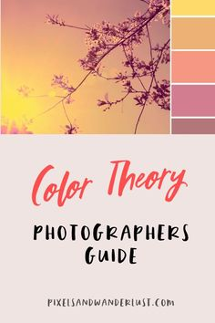 Color is a powerful tool in an image. I created this tutorial to teach you how to apply Color Theory to your photos.