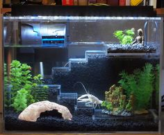 A zen tank for a little crayfish. Home Aquarium, Aquarium Design, Aquarium Setup, Nano Aquarium, Axolotl Tank, Fish Tank Themes, Turtle Aquarium, Nano Cube, Cool Fish Tanks