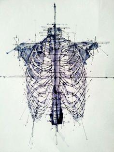 LIne Art Skeletal Skeleton drawing Feltip by BLACKARTLINES on Etsy, £9.99