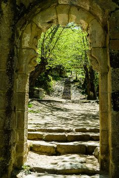 Monasterio de Santa Cristina, Ribas do Sil. Places To Travel, Places To See, Places Around The World, Around The Worlds, Fantasy Places, Fantasy Landscape, Kirchen, France Travel, Ancient Architecture