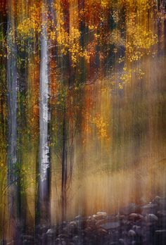 Mid-October by Ursula Abresch on 500px
