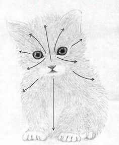 Draw a little kitten - Things I Want To Draw - [post_tags Baby Animal Drawings, Animal Sketches, Pencil Art Drawings, Art Drawings Sketches, Art Sketches, Thread Painting, Painting & Drawing, Cat Drawing Tutorial, Kitten Drawing