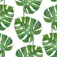 Aquarell Monstera Blatt nahtlose Muster auf wei�em Hintergrund photo
