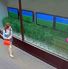 Digital shop front window