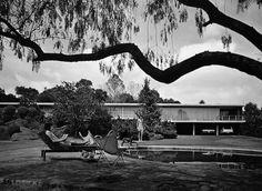 coutinoponce:  Casa Fernández 1956 Col. Jardines del Pedregal. México D.F. Arq. Francisco Artigas