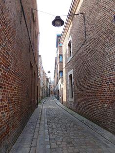 Lille - les murs de briques Destinations, Calais, France, City Art, Study Abroad, Walkway, Art Nouveau, Random, Places