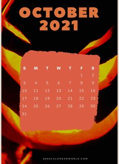 #OctoberCalendar #October2021Calendar #Calendar #2021Calendar #OctoberWallpaper #FloralCalendar #OctoberFloral #Holidays October Calendar Printable, Holiday Calendar, 2021 Calendar, October Wallpaper, Calendar Wallpaper, Office Colleague, February Month, India Holidays, Floral Printables