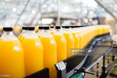 Stock Photo : Bottling plant Every Other Day Diet, Plants In Bottles, Lose 15 Pounds, Champagne Bottles, Fruit Juice, Everyday Items, Image House, Orange Juice, How To Lose Weight Fast