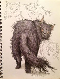Draw Cats I love this illustration, especially the cat tail. Warrior Cats -- Yellowfang by SoooThisIsArt----Wow on DeviantArt - Warrior Cats Fan Art, Warrior Cats Series, Warrior Cats Books, Warrior Cat Drawings, Animal Drawings, Cool Drawings, Cat Safe Plants, Love Warriors, Cat Shelves