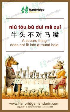 Chinese idiom 牛头不对马嘴 niú tóu bú duì mǎ zuǐ  A square thing does not fit into a round hole.