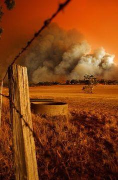 Bush fire in Australia (Black Saturday, VIC) Western Australia, Australia Travel, South Australia, Cool Photos, Beautiful Pictures, Australian Bush, Land Of Oz, All Nature, Victoria Australia
