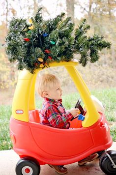 I got this whole tree thing under control! ~~ Raleigh portrait photographer M Cubed Photos